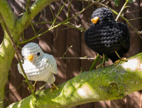 Kleiner Vogel kostenloses Häkelmuster | stellasyarnuniverse.com